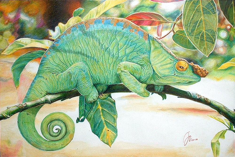 jos-atwork-2006-green-chameleon-37-x-52